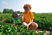 ¿Qué es la Agricultura Biológica?
