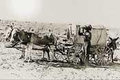 Desertificación y Desarrollo Sostenible