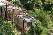 Erradicación de la pobreza y desarrollo sostenible