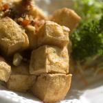 Tofu a la Oriental