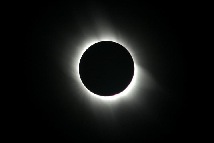 1319065