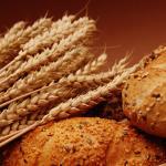 Alternativas al gluten