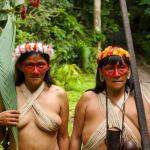 Plantas del Amazonas