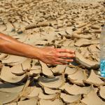 Consumo de agua embotellada
