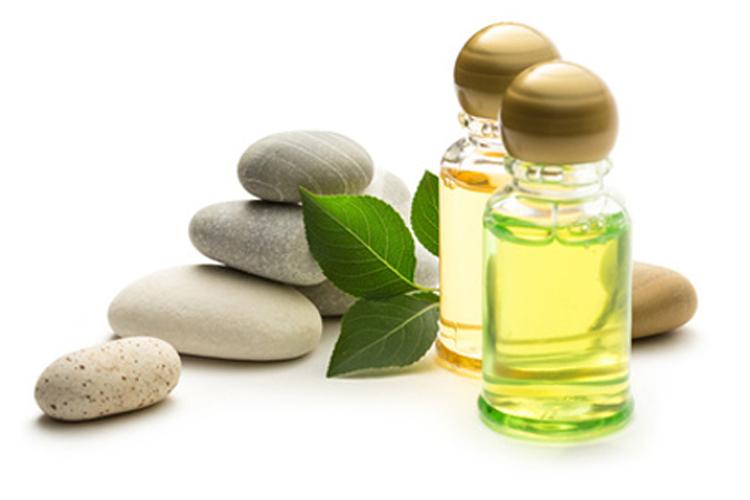 El concepto el aceite de linaza para los cabellos las revocaciones