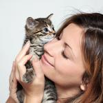 Alergias a perros y gatos