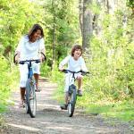 Cómo elegir una bicicleta