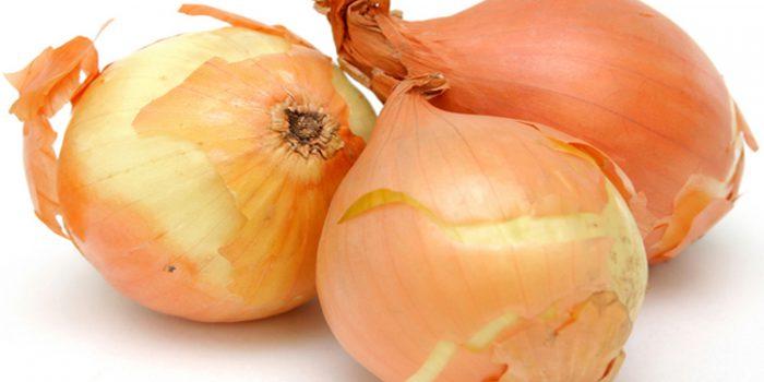 La Cebolla, una gran aliada de nuestra salud