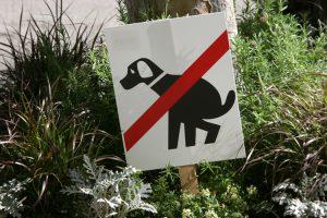 Cacas de perros en las ciudades