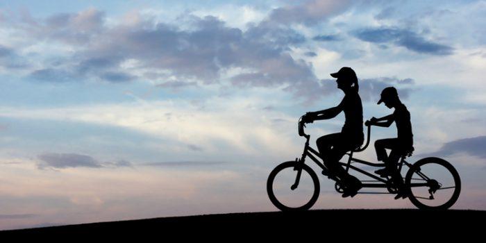 De la rigidez a la movilidad