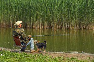 Animales como Terapia ¿Sirven todos los animales?