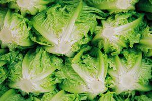 Como hacer una ensalada prensada