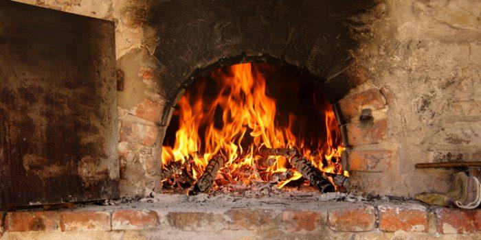 Tipos de Agni, el fuego digestivo
