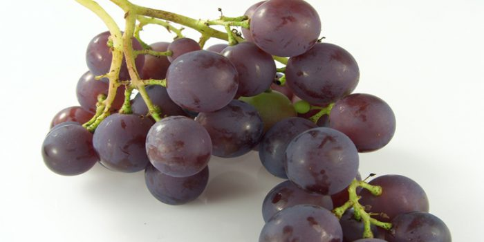 Beneficios y propiedades de los taninos