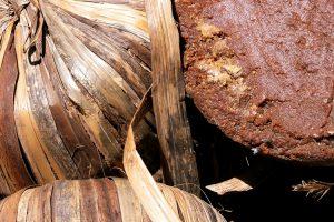 Propiedades y usos del azúcar de Panela