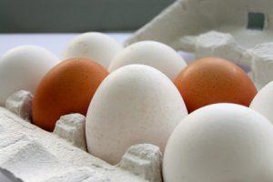 Propiedades de los huevos