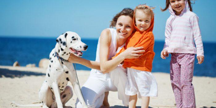 Dieta para el hipotiroidismo, pautas generales