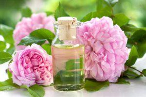 Usos y propiedades de la rosa damascena