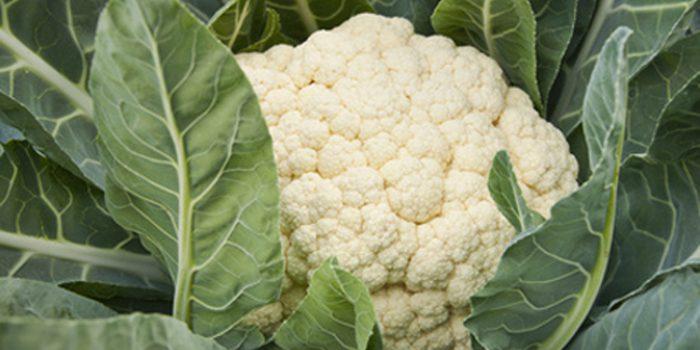 La coliflor, rica en fibra y antioxidantes