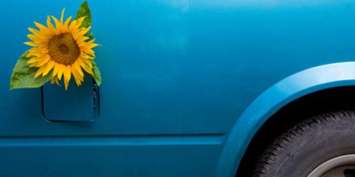 Inconvenientes del biodiesel