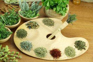 Propiedades medicinales del orégano y algunas contraindicaciones