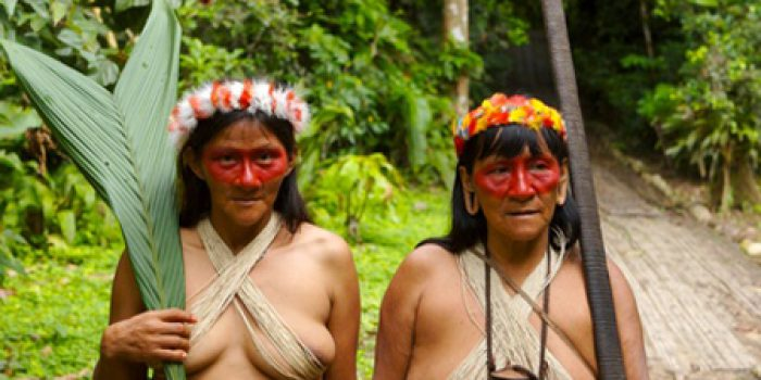 ¿Qué ventajas terapéuticas tienen las plantas del Amazonas?