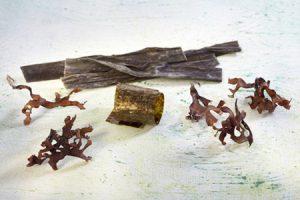 Propiedades del alga alaria