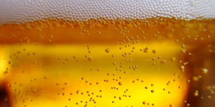 Levadura de Cerveza, un excelente complemento