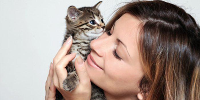 Alergias a perros y gatos, ¿es posible convivir con ellos?