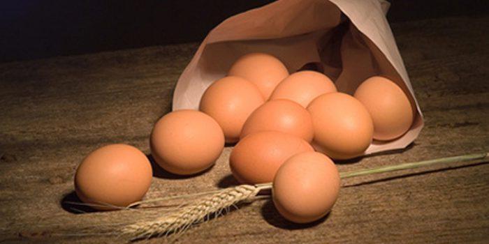 Cosas a tener en cuenta si tienes intolerancia al huevo