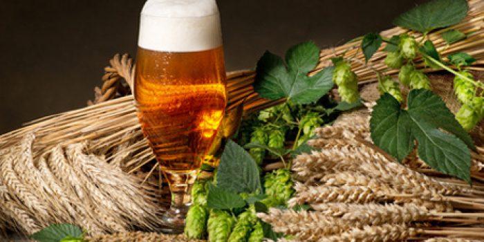 Beneficios de la malta de cebada y el malteado