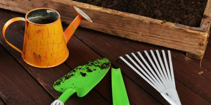 C mo elegir una mesa de cultivo para su huerto casero for Como hacer una mesa de cultivo casera