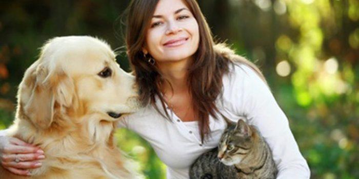 ¿La convivencia entre perros y gatos es imposible?