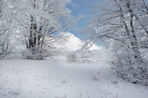 ¿Qué podría significar soñar con nieve?