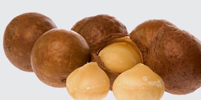 Propiedades de las Nueces de Macadamia