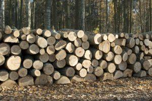 Cómo mejorar naturalmente la durabilidad de la madera