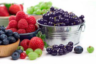 antioxidantes-pelo