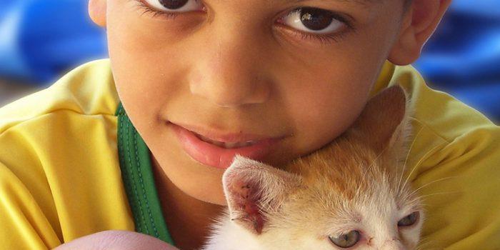 Estado de ánimo y animales, cómo nos influyen