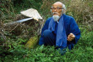 Método Fukuoka , cultivo natural