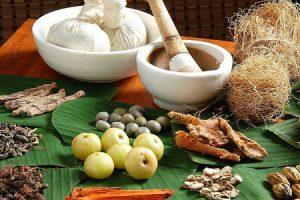 Fundamentos de la Medicina naturista o Naturopatía