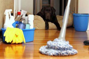 productos-de-limpieza