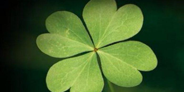 ¿Existe alguna manera de atraer la suerte?