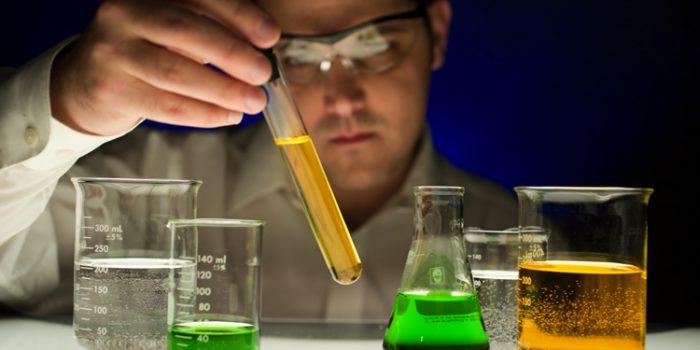 Los Siete Principios de la Homeopatía Unicista