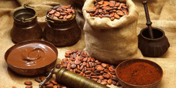 Usos y propiedades del cacao