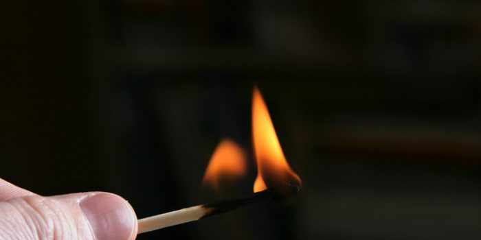 Como usar plantas para quemaduras