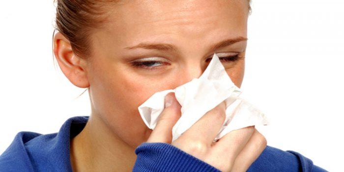 El Reishi para tratar las alergias