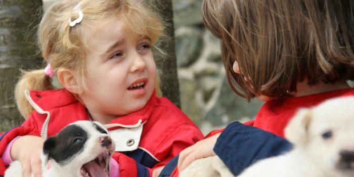 ¿Cómo se sienten los niños ante la muerte de una mascota?