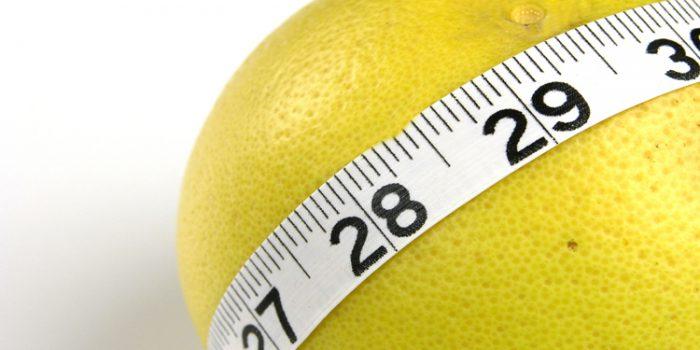 Mascotas con sobrepeso, consejos para evitarlo