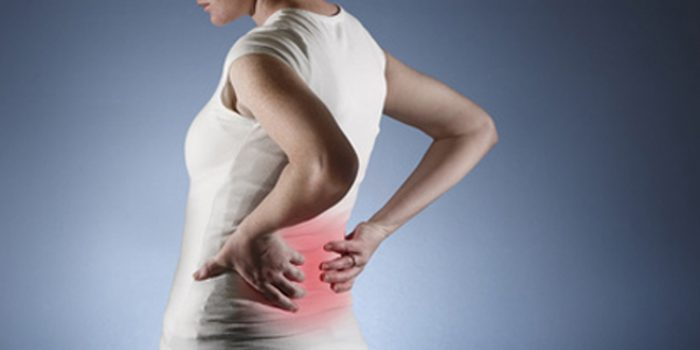 Propiedades del Harpagofito: el antiinflamatorio natural