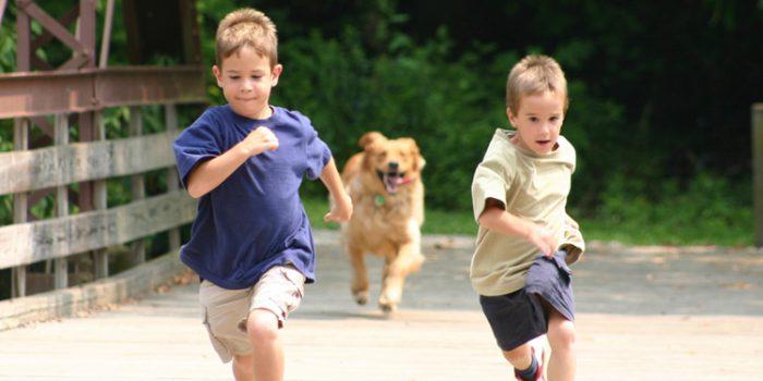 Juegos para niños hiperactivos, el mejor medicamento